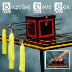 Surprising Dove Box - Tora