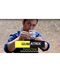 Gumatrix by Patricio Terán video DOWNLOAD