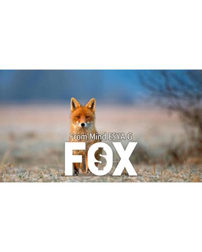 FOX by Esya G video DOWNLOAD