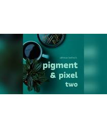 Pigment & Pixel 2.0  by Abhinav Bothra ebook DOWNLOAD