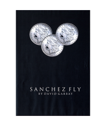 Sanchez Fly by David Gabbay - video - DOWNLOAD
