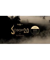 Paul Harris Presents Steam 2.0 Refill Envelopes (25 Ct.) by Paul Harris - Trick