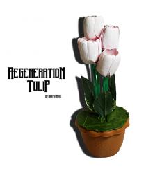 Regeneration Tulip by Himitsu Magic - Trick